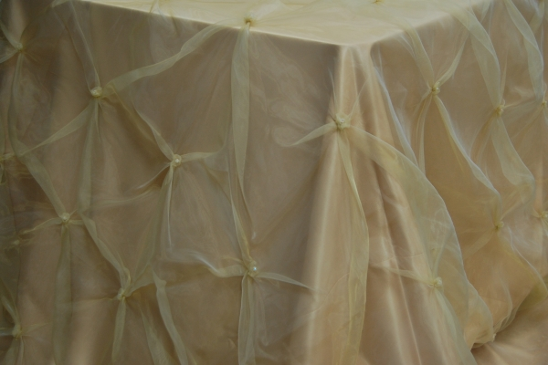 18-gold-pinch-organza